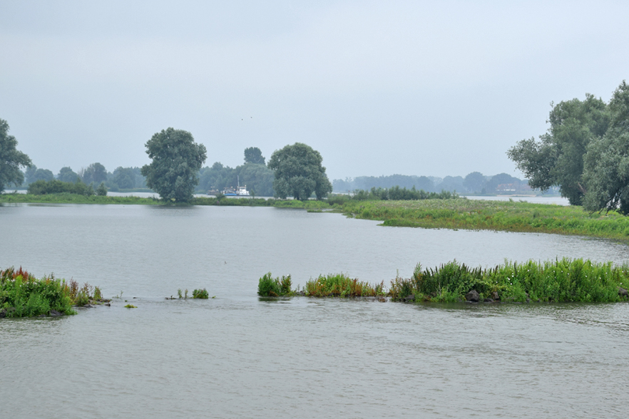 riveer.nl